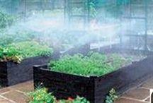 bewatering / bewatering systemen voor in de tuinkas en moestuin