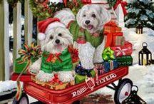 Christmas dog and more animals