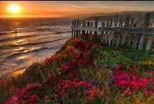 Sunset spectacular