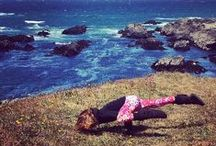 Keeping fit while on vacation at Sea Ranch Abalone Bay / Taking a #vacation at #AbaloneBay in #SeaRanch doesn't mean taking a vacation from staying fit. This board contains ideas and recommendations on how to manage your fitness regime and enjoy a holiday too