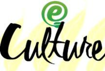 Culture / the arts and other manifestations of human intellectual achievement regarded collectively.