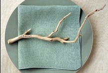 DIY & Green / by Whitney Giannelli