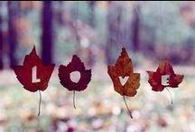 don't skip over autumn!
