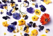 / eadible flowers