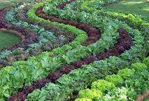 / farming chic