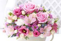 Flowers and flower arrangements