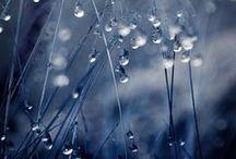 Shades of blue / Оттенки синего