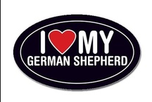 I LOVE GSD's!!! / I love German Shepherd Dogs and everything to do with a GSD!!!