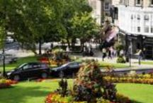 Harrogate the Great / All things Harrogate and what makes our town pretty