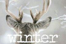 + Winter +