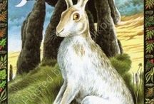 hares