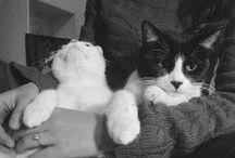 Black & White / Bianco & Nero