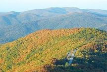 Shenandoah National Park / by Katie Hearns