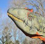 Extinct Animals and Fossils / Animali Estinti e Fossili