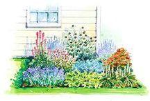 Home Exterior & Garden