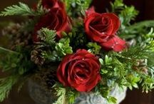 Festive Decor / Floral decorations and ideas for your home this Winter