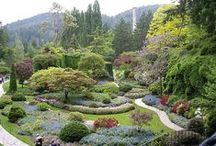 "Gardens for the soul / Lovely gardens all over the globe. (Click on picture and then ""Visit site"" to see original.)"