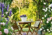Jardines | Gardens