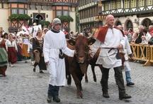 Festumzug Harzfest 2009