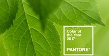 Pantone® 2017 Color of the Year / PANTONE 2017 - 15-0343 Greenery -  A refreshing and revitalizing shade, Greenery is symbolic of new beginnings. Greenery is a fresh and zesty yellow-green shade that evokes the first days of spring when nature's greens revive, restore and renew. Illustrative of flourishing foliage and the lushness of the great outdoors, the fortifying attributes of Greenery signals consumers to take a deep breath, oxygenate and reinvigorate.
