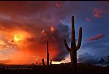 I LOVE ARIZONA! / Places to visit and things of interest about Arizona / by Terry Boyle