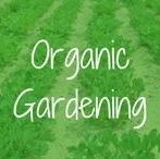 Organic Gardening / Organic gardening products and tips for healthier and more enjoyable living