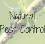 Natural Pest Control / Natural Pest Control | Garden | Indoor | Eco-Friendly | Non-Toxic Pest and Animal Control