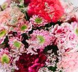 Happy Valentine / Liebe, love, amore, amour, liefde, amor, kärlek, любовь... Mit roten Rosen zum Valentinstag sagt man mehr als tausend Worte! Am 14. Februar ist Valentinstag! <3