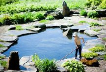 Swiming pond