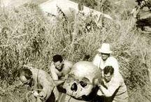 Riesen / bei Ausgrabungen gefunden