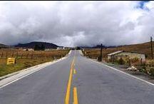 Senderos, Puentes Y Caminos / Caminos que nos unen