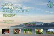 Agroecology Resources / A collection of great web resources useful for the Productive Ecological Gardener/Designer