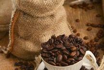 COFFEE / by Rosario Silva Bellini