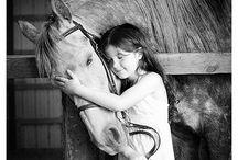 Horses:) / Horses