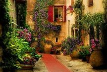 En Provence, France / about the relaxed French country style