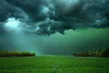 Maravillosa naturaleza... / ...que el hombre jamás podrá dominar mientras su ego lo domine.
