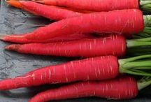Red Carrots / Red carrots are another variety of carrots originally from India and China.   They contain a pigment known as lycopene which is associated with a lowered risk of prostate cancer in men as well as heart disease.  Other health benefits include its ability to help maintain healthy skin.  This pigment is also found in watermelons and tomatoes.  Red carrots are often found in Asian markets and are sometimes known as Pakistani carrots. For more info visit http://www.lifegivingfoods.org/