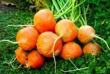 Parisian Carrots / http://www.lifegivingfoods.org/