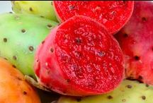 Prickly Pear / Prickly pears have 2 spines; large, smooth, fixed spines & small hair-like prickles. It is native to the Americas but have been introduced to other parts of the globe.  It is used in candy, jelly, or drinks. Its pulp & juice are treatments for wounds & inflammation of the digestive and urinary tracts. It is used for type 2 diabetes, high cholesterol, obesity, alcohol hangover, colitis, diarrhoea & to fight viral infections. For more info visit http://www.lifegivingfoods.org/