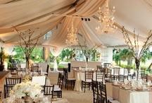 Wedding Stuff for my Girls! / by Sandy Le Desma Shanholtzer