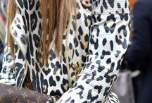 Leopard and Cheetah Prints / by Rene Inge