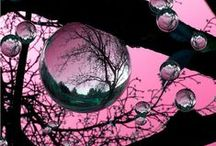pink and black / by Rene Inge