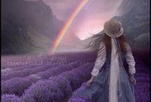 Day Dream Believer / by Rhonda Tornow