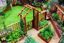 Paisagismo/Jardinagem