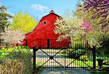 The Barn Door / by Rhonda Tornow