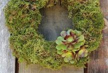 Wreaths / by Erin Borja