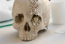 ✚ bones ✚ / by Frances Ratner