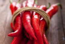 Hot Pepper / Idéias para apimentar nossa vida! / by Flávia Mergulhão