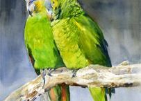 Art of birds / Beautiful birds depicted in paintings.