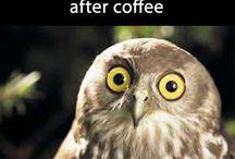 Funny / Hahaha! Hilarious